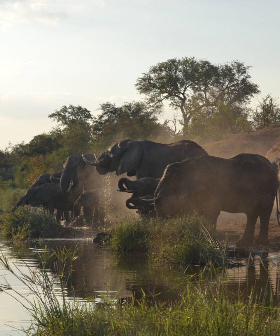Sudáfrica - África