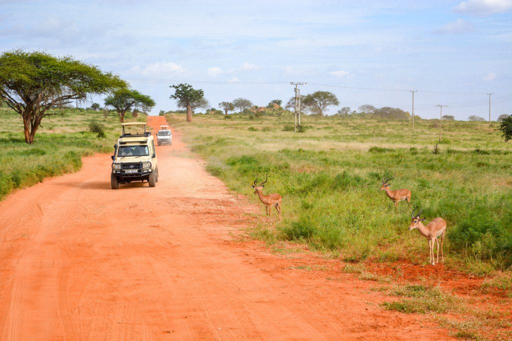 Parque Nacional Chobe y Reserva de Caza Moremi Botswana