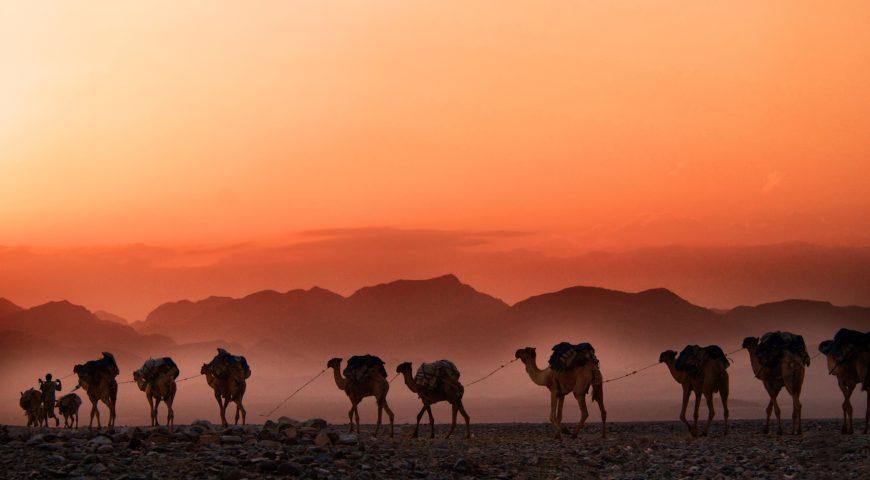 10 cosas que debes saber antes de ir a Etiopía