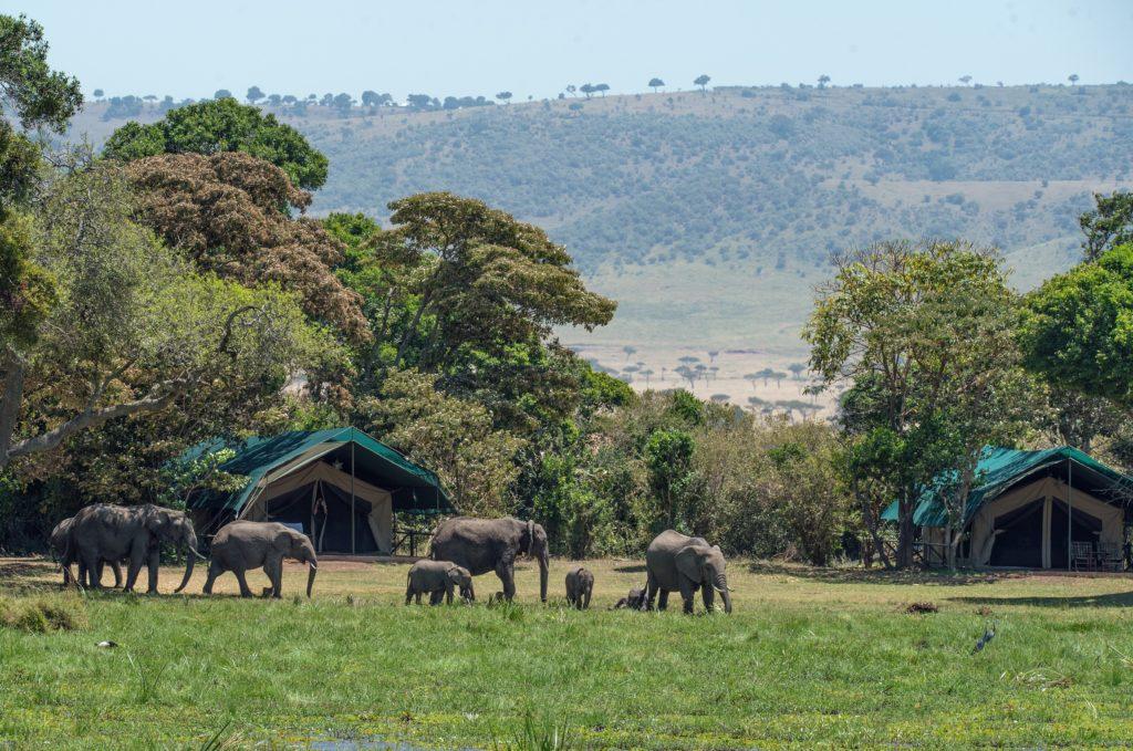 Masai Mara alojamientos campamentos en tiendas de campaña.