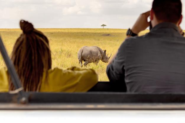 Recorrido de safaris