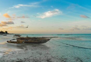 Recorre las espectaculares llanuras y playas del Parque Nacional Saadani